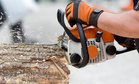 Stihl Timbersports: Ein Wettbewerb der Spitzenklasse