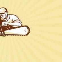 Mit Kettensäge ins Guinnessbuch der Rekorde