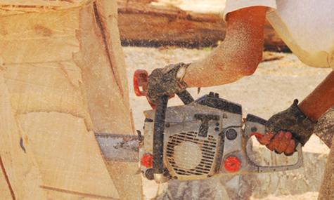 Harte Hunde schaffen fantastische Kunstwerke – Der Huskycup 2014