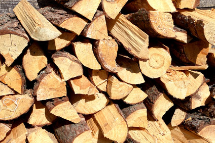 Brennholzverarbeitung: Innovatives Kappsägenprinzip