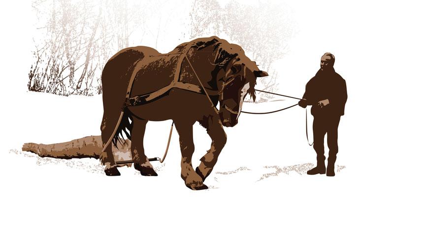 Holz rücken: Pferd vs. Technik