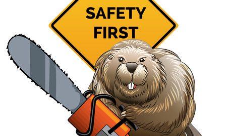 10 Sicherheitsregeln für den Umgang mit der Kettensäge